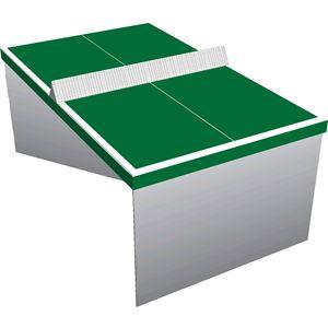 Picture of שולחן פינג פונג מקרטון